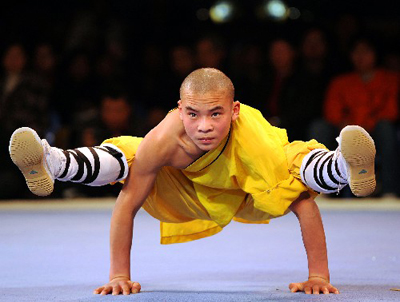 Kungfu martial arts 2