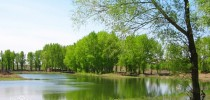 Learn Four Seasons Chinese Words and Expressions