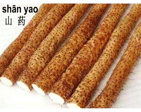 Chinese Yam